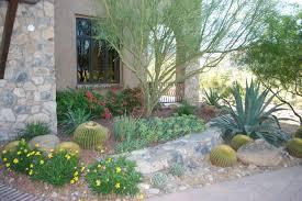 desert landscape plants