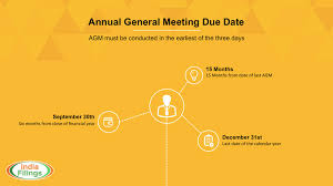 guide to annual general meeting for indian companies