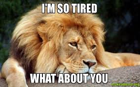 I M So Tired Meme - i m so tired what about you tierd lion make a meme