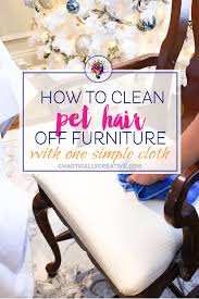 Homeroom Furniture Kansas City by How To Clean Pet Hair Off Furniture Best Furniture 2017
