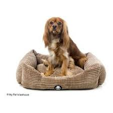 indestructible dog bed home products