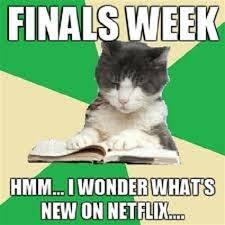 Funny Finals Memes - finals meme