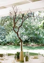 Tree Branch Centerpiece by 58 Best Arboles Secos Images On Pinterest Manzanita Branches