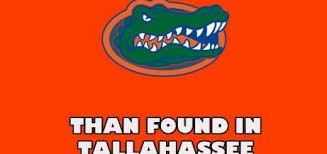 Uf Memes - university of florida archives all about my college