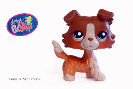 littlest shop collie images reverse search
