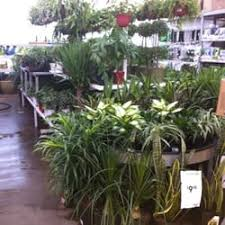 Flower Shops In Springfield Missouri - lowe u0027s home improvement hardware stores 1850 e primrose st