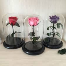 forever roses preserved roses in glass dome preserved roses in glass dome