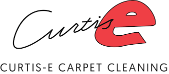 Area Rug Cleaning Portland by Frequently Asked Questions U2014 Curtis E Carpet Cleaning