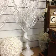 wedding wishing trees for sale second manzanita tree in ireland view 37 bargains
