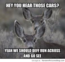 Deer Hunting Memes - 12 funny hunting memes that every redneck will love