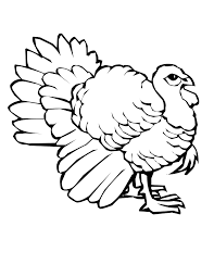 coloring page impressive turkey for coloring printable pages