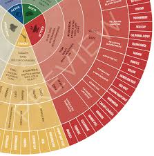 Herbal Energetics Chart Real Fitness