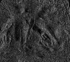 11 dark graphite textures texture fabrik