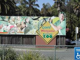 best cv exles australia zoo 196 best steve irwin images on pinterest irwin family crocodile