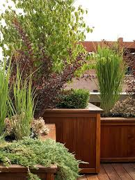 How To Make Your Backyard Private 56 Best Backyard Ideas Images On Pinterest Backyard Ideas