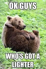 Meme Bear - 2 bear who s got a lighter meme pmslweb