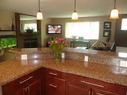 bi level kitchen ideas kitchen designs for split level homes enchanting idea bi level home