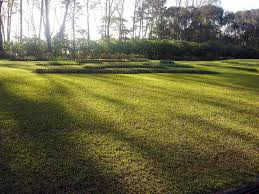 winterize your lawn kissel landscaping