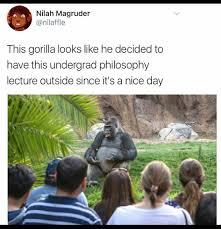 Ape Meme - best of the gorilla saying something important meme 18 pics
