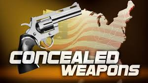 concealed weapon permit kings county
