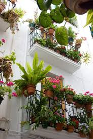 Porch Rail Flower Boxes by Best 25 Balcony Planters Ideas On Pinterest Small Balcony
