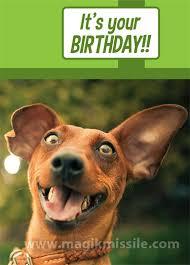 Funny Animal Birthday Memes - 1905 birthday card magik missile