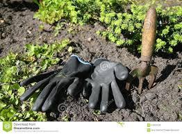 black gardening gloves gardening tools stock photos image 14467633
