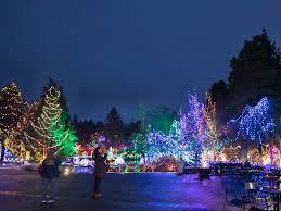 vancouver christmas light maze vandusen festival of lights kicks off holiday season vancouver sun