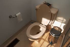 Bad Smell In Bathroom A Bad Sewer Smell Is Coming From The Closet Hunker