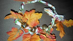 how to make a thanksgiving themed collar purina chow