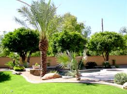 Florida Landscaping Ideas by Florida Landscape Ideas Front Yard Low Maintenance Landscaping