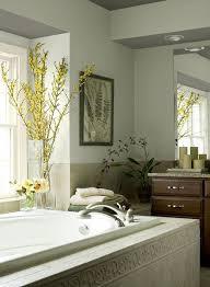 13 best spa bathroom images on pinterest bathroom cabinet paint