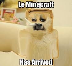 The Doge Meme - the doge meme is back and this time it s liquified mighty viral