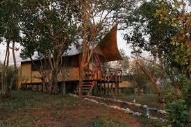 chimps u0027 nest lodge uganda timbuktu travel