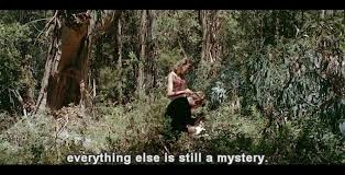 quote from jungle book pierrot le fou u2013 godard and the ecstasy of words lisa thatcher