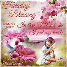 804 best tuesday blessings images on happy tuesday