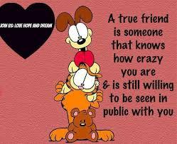 True Friend Meme - true friend is someone that knows