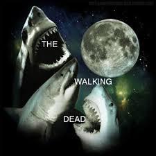 Three Wolf Moon Meme - the walking dead