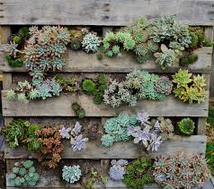 herb gardens in pots home outdoor decoration