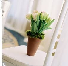 Potted Plants Wedding Centerpieces by 57 Best Living Centerpieces Images On Pinterest Centerpiece