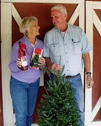 trinity tree company grower of beautiful fraser fir christmas trees
