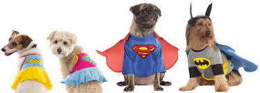 Superheroes Halloween Costumes Dog Halloween Costumes Favorite Funny Small