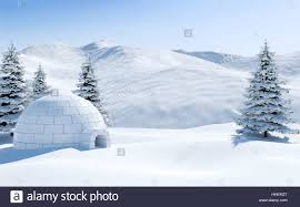 igloo in snowfield with snowy mountain and pine tree covered with