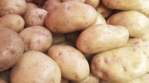 Seeking New Zealand New Zealand Calls Potato Export Plan The Weekly Times