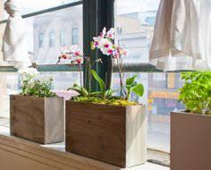 window planters indoor the sill terrain planting a window box indoor window boxes