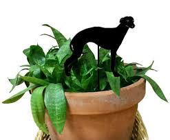 whippet ornament or plant stake rustica ornamentals