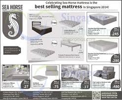 Seahorse Bed Frame Sea Mattresses Sofa Offers 3 17 Sep 2015