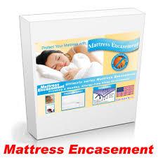Mattress Bed Bug Cover Split Queen Bed Bug Mattress Cover