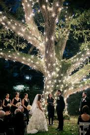 Backyard Wedding Lighting Ideas Best 25 Outdoor Tree Lighting Ideas On Pinterest Outdoor Trees