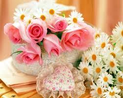 fresh flowers fresh flower supply casoarina the beauty of serving